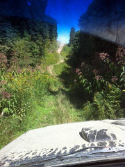 Offroad trail picture from behind the wheel of Donny's Jeep Cherokee